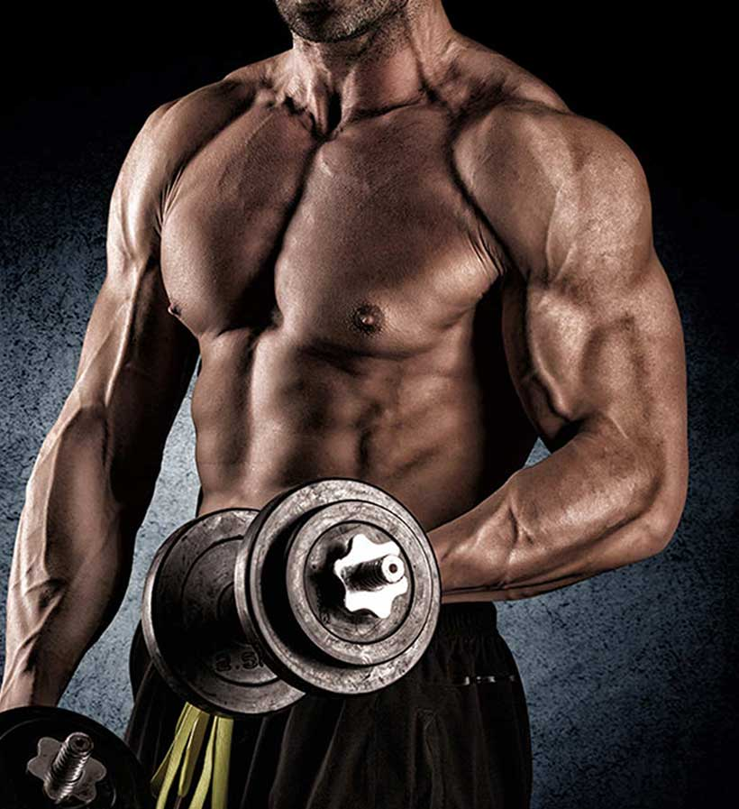 Muscle SARMs